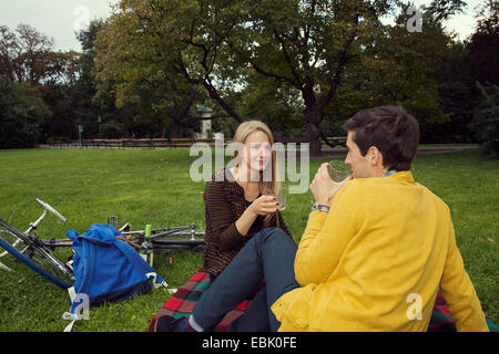 Young couple drinking wine on picnic blanket in park - Stock Photo