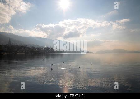 Lake Zug, city and mountains in midday sun, Switzerland, Kanton Zug, Zug - Stock Photo