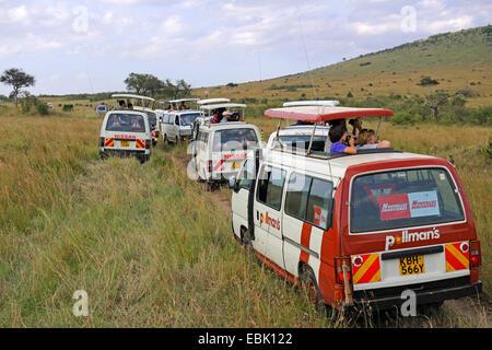 tourists in busses watching animals in Masai Mara, Kenya, Masai Mara National Park - Stock Photo