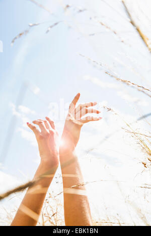 Young womans hands amongst long grass - Stock Photo