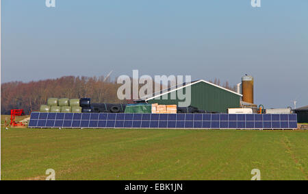 solar panels at barnyard, Netherlands, Frisia, gaast - Stock Photo