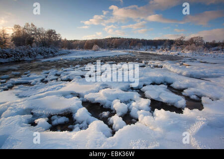 river Feshie in winter, United Kingdom, Scotland, Cairngorms National Park - Stock Photo