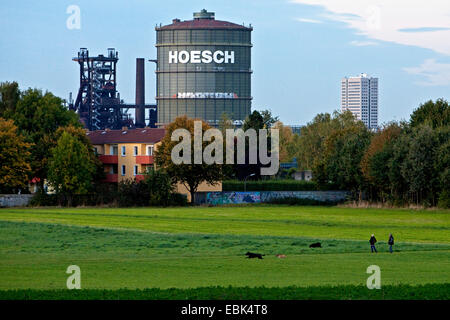 panoramic view over a meadow in the conservation area Hacheney at the heritage-protected smelting furnace plant - Stock Photo
