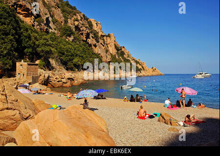 tourists sunbathing on the beach of Ficajola, France, Corsica - Stock Photo