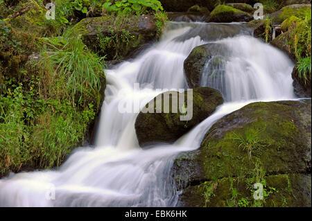 Triberg Waterfalls, Germany, Baden-Wuerttemberg, Black Forest - Stock Photo