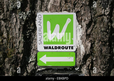 hiking signs on tree trunk, Sauerland forest route, Germany - Stock Photo