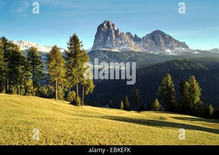 view to Plattkofel and Langkofel, Italy, South Tyrol, Dolomites - Stock Photo