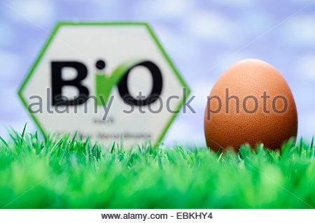 hen�s egg with organic certification - Stock Photo