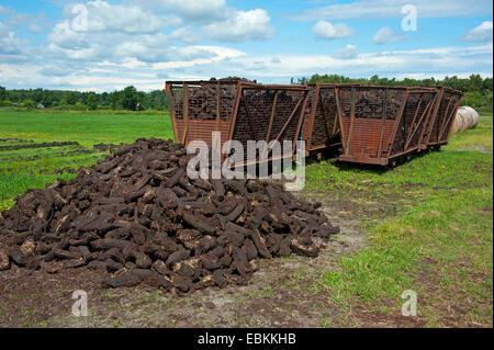 peat cutting, sods of peat and wagons, Germany, Lower Saxony, Wilhelmsfehn - Stock Photo