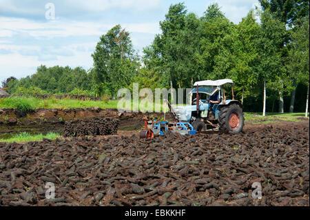 peat cutting, tractor cutting peat, Germany, Lower Saxony, Wilhelmsfehn - Stock Photo