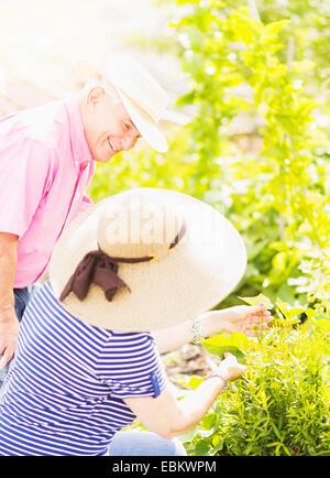 Close-up shot of couple gardening together - Stock Photo