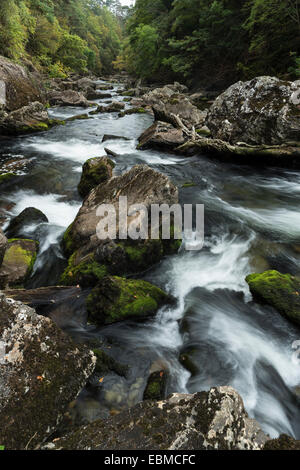 The river Glaslyn flows between the trees and rocks of the Aberglaslyn Pass in Snowdonia, Gwynedd, North Wales - Stock Photo