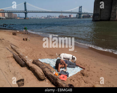 New York, NY 25 July 2009 - Two men and a dog on a beach beneath the Brooklyn Bridge. One cleans the other sun baths. - Stock Photo