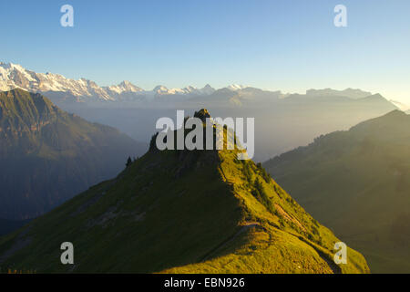 view from Schynige Platte to Silberhorn, Mittaghorn, Breithorn, Tschingelhorn, Gspaltenhorn and Bluemlisalp, Switzerland, - Stock Photo
