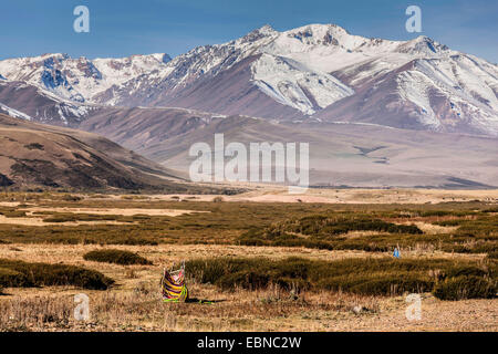open air toilette in steppe, snow-caped mountain range in background, Kyrgyzstan, Djalalabad, Taskoemuer - Stock Photo