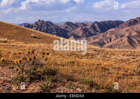 steppe in front of mountain scenery, Kyrgyzstan, Lake Song Kol, Naryn - Stock Photo