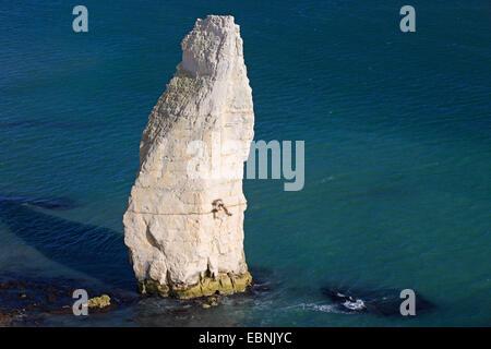 needle rock of the Old Harry Rocks, United Kingdom, England, Dorset, Old Harry Rocks - Stock Photo
