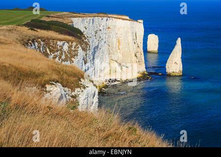 Old Harry Rocks at the Jurassic Coast in Southengland, United Kingdom, England, Dorset, Bournemouth - Stock Photo