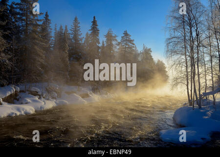 steaming river in winter scenery in early morning light, Finland, Kuusamo - Stock Photo