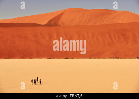 hikers in the dead trees valley in desert of Sossusvlei, Namibia, Namib Naukluft National Park - Stock Photo
