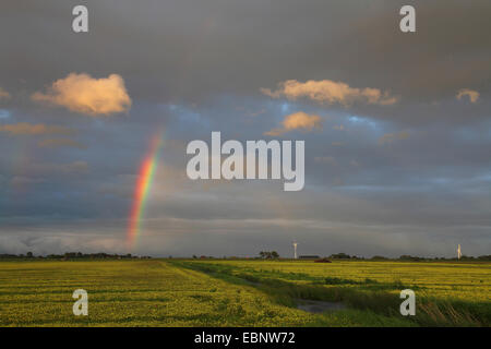evening mood with a rainbow over marsh meadows near the Ijsselmeer, Netherlands, Frisia, Ijsselmeer - Stock Photo