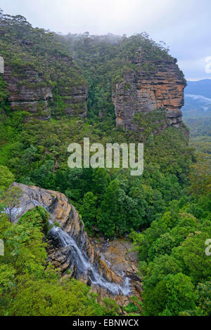 Bridal Veil Falls in the subtropical rain forest of the Blue Mountains, Australia, New South Wales, Leura - Stock Photo