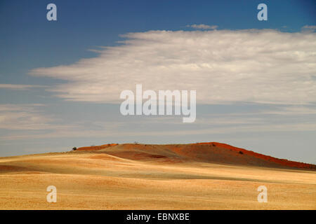desert landscape with sand dunes and clouded sky, Namibia, Namib Naukluft National Park - Stock Photo