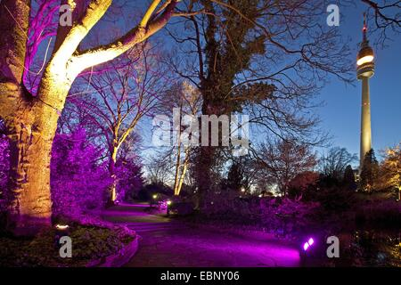 illuminated Westfalenpark and Florianturm at night, Germany, North Rhine-Westphalia, Ruhr Area, Dortmund - Stock Photo