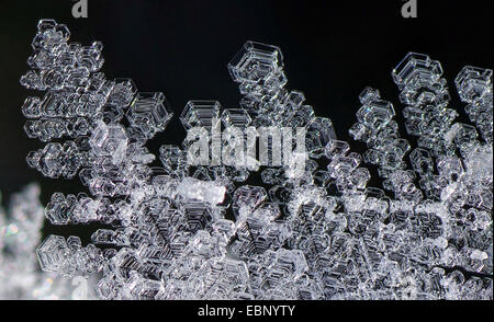 ice crystals, Germany, Bavaria, Oberbayern, Upper Bavaria - Stock Photo