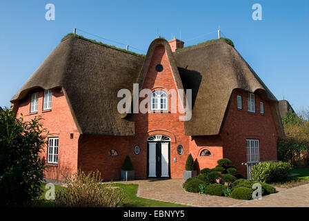 typical frisian house keitum sylt island schleswig holstein stock photo 61311593 alamy. Black Bedroom Furniture Sets. Home Design Ideas