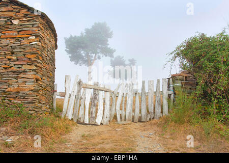 Way of St. James, wooden fence in morning mist, Spain, Galicien, Provinz , USA, Montanas Del Fuegos