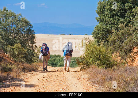 Way of St. James, two pilgrims in dusty landscape on their way from Santibanez de Valdeigles in front of San Justo - Stock Photo