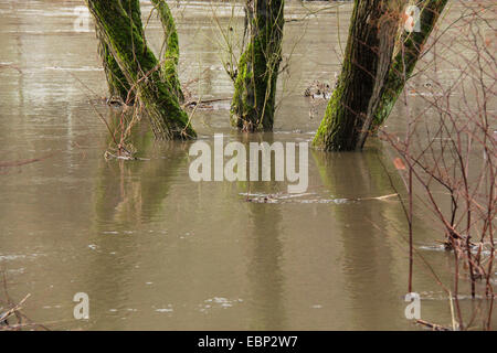 high water of Ruhr River, Germany, North Rhine-Westphalia, Ruhr Area, Wetter/Ruhr - Stock Photo