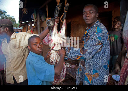 young butcher disemboweling a sheep at the roadside under unhygienic conditions, Burundi, Near National Parc de - Stock Photo