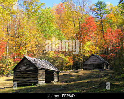 Alex Cole farm log cabins on Roaring Fork Motor Nature Trail in autumn in Great Smoky Mountains National Park - Stock Photo
