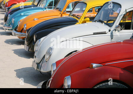 vw beetle a cult classic vintage car stock photo royalty free image 62285528 alamy. Black Bedroom Furniture Sets. Home Design Ideas
