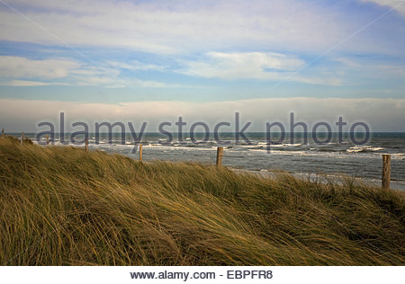 Utah Beach, site of American landing on June 6, 1944, coast, Normandy, France - Stock Photo
