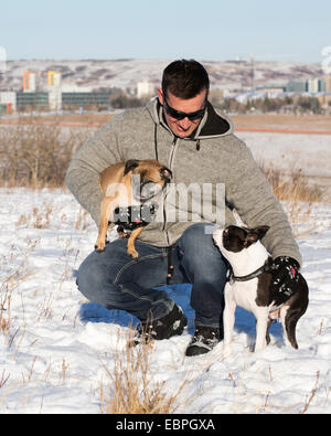 Man with Boston Terrier and Bugg (cross between Boston Terrier and Pug) dogs in city park - Stock Photo