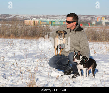 Man with his dogs, a Boston Terrier and a Bugg (cross between Boston Terrier and Pug), in city park