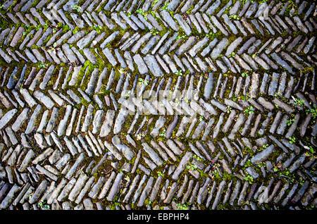 Old road, pavement with a herringbone pattern, Germany, Europe, Alter Weg, Pflasterung im Fischgrätmuster, Deutschland, - Stock Photo