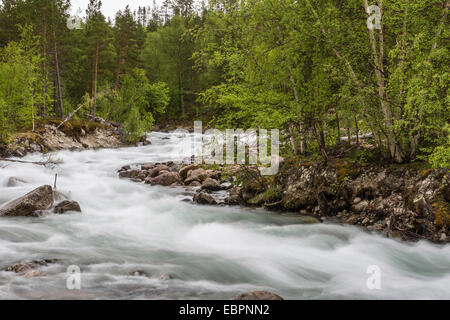 Slow motion blur detail of a raging river in Hellmebotyn, Tysfjord, Norway, Scandinavia, Europe - Stock Photo