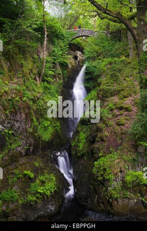 Aira Force, Ullswater, Lake District National Park, Cumbria, England, United Kingdom, Europe - Stock Photo