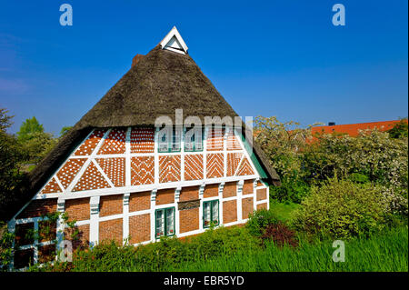 Altlaender farmhouse in Luehe Gruenendeich, Germany, Lower Saxony - Stock Photo