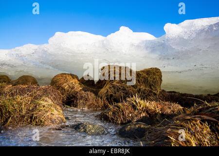 ice on the beach, Norway, Troms - Stock Photo