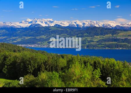 Lake Zurich and Glaernisch, view from the Pfannenstiel, Switzerland, Zuercher Oberland - Stock Photo