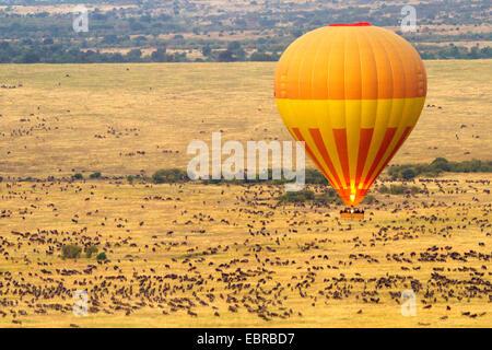 balloon safari at the Masai Mara in the morning, Kenya, Masai Mara National Park - Stock Photo