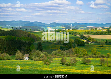 landscape in spring, view onto the Rothaar Mountains, seen from Bracht near Schmallenberg, Germany, North Rhine - Stock Photo