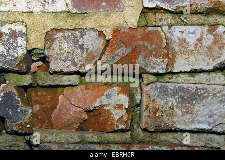 section of a weathered red brick wall, Germany - Stock Photo