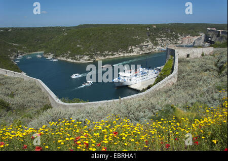 ferry and ships in a fjord, Goulet de Bonifacio, France, Corsica, Bonifacio - Stock Photo