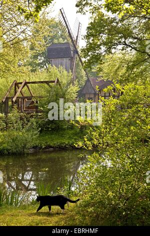 post mill at the water ditch in the Muehlenhof open-air museum, Europe, Germany, North Rhine-Westphalia, Muensterland - Stock Photo